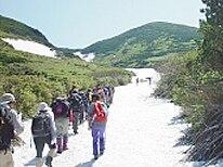 6月:十勝岳山開き