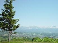 夏の上富良野町イメージ